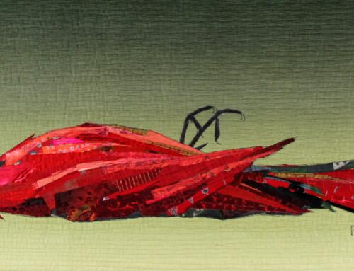 Cardinal Down